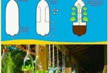 ideas ecologicas