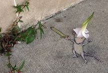 I love  the art of David Zinn