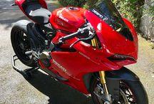 Beautiful  Ducati / All things ducati