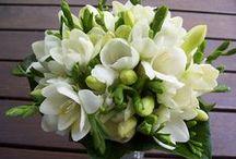 Flowers - Bouquets / Bloemen in boeketten