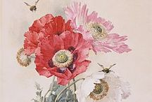 Art - flowers / all kinds of flower paintings