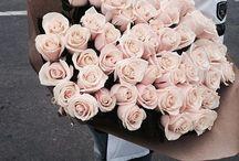 FLOWERS. . .