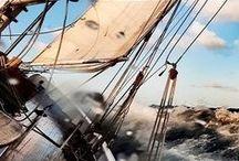 Sailing & ocean life