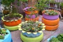 FLORES E JARDINS/FLOWERS & GARDENS / Decoração de jardins, flores, canteiros, projetos de jardinagens, etc