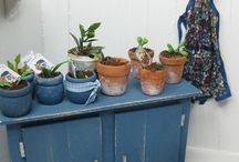 Dollhouse Gardening, Plants & Outside Environment / Plant table, pots, gardening tools, plants, furniture etc