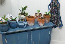 Dollhouse Gardening, Plants & Outside Environment / Plant table, pots, gardening tools, plants, furniture etc