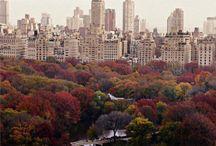 Autumn / ...colourfull fime ever ❤️