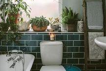 Interior : Bathroom