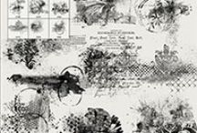 Commercial Use - Studio Girls / Commercial Use Products by the Designers of Scrapbookgraphic
