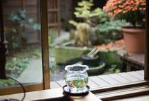 Japanese homes & Gardens