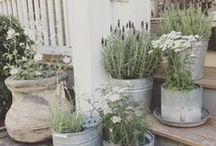 Container gardening / Gardening year round with a greenhouse