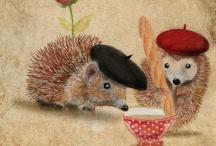 Hedgehogs & Porcupines