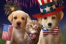 Celebrate America  / U S A!