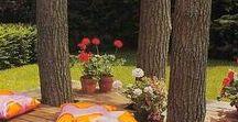 Garden & Yard / Garden ideas