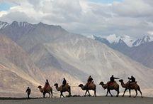 Kashmir/Ladakh/Himachal Pradesh / by MAK