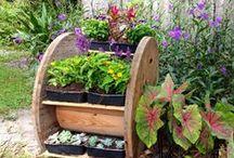 plantekasseideer