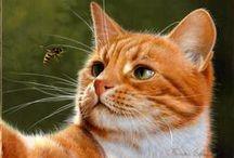 Нарисованные кошки / Painted cats / Любовь к этим милым и замечательным животным выражена художниками на многочисленных полотнах . / The love of these sweet and wonderful animals are expressed by artists in many paintings .