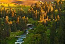 Idaho / by Kathleen Smith