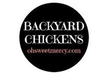 Backyard Chickens / Backyard chickens bring joy, eggs and even heartache at times. Find what you need to know to keep your flock healthy and happy.