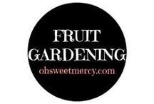 Fruit Gardening / Fruit trees, berries and all things fruity to grow in your garden - you'll find tips and tricks here to help you.
