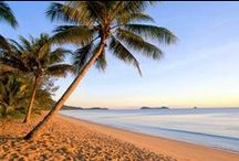 Palm Cove Queensland Resorts / Palm Cove Queensland Resorts with video, special offers and local knowledge.