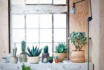 Green! / Bloemen, planten, binnen en buiten