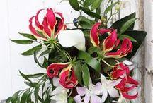 my bouquets! / arte
