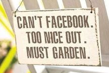 Garden Expressions / Gotta love these fun sayings! Visit us at www.bordines.com