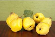 quinces / by Wendy Blair