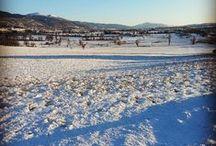 Un Lungo Dolce Inverno / Tutte le sensazioni che rendono magico il nostro inverno.
