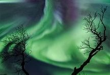 Within The Arctic Circle / Places within the Arctic circle. Arctic wildlife & photography.