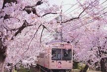JAPAN | Japanese Culture, Fashion & Food