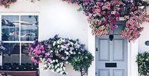 GARDENING | Garden Inspiration, Tips, Plants