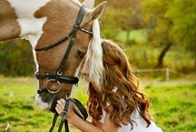In Love with Horses