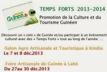Temps Forts 2013-2014