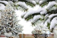 Winter / Fototapet personalizat pentru Sarbatorile de Iarna contact@fototapet.ro