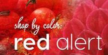 Shop by Color: Red Alert / Color palettes, yarns, art, everything Colormusing does in passionate reds ranging from scarlet to vermilion.