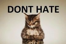 humor / warning: there may be profanity!