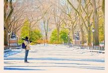 NYC:parks