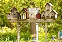 Driveways & Gardens / A selection of inspiring driveways and front gardens, and rear garden/landscaping ideas