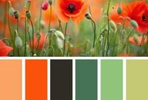 Color Combo Ideas / by Wall Decal World