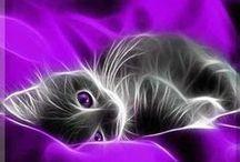 purple  королевский фиолетовый