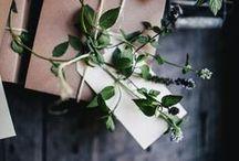 packaging / Packaging ideas, natural look