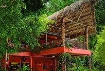 Eco Lodges & Sustainable Hotels / # Eco Lodges, #Green Hotels, # Environmentally Friendly Camping, #Sustainable Resorts and etc. Share your info here. If you are interested in joining this board, just comment with request to be added.