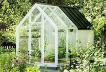 home | in the garden / small spaces, big places, in the garden, at the allotment, wild spaces and curated flower beds
