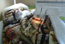 ...must help my quilter / cats & quilts: some love to lie on quilts, some on the quilter, some love both...