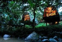 Best Wildlife Lodges in the World / Check out some of the best wilderness and safari lodges in the world.