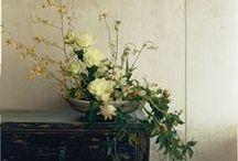 admire it :: flora