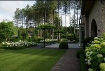 Outdoor Plants & Landscape / backyard, fence, landscape, plants, privacy / by Freshpicture