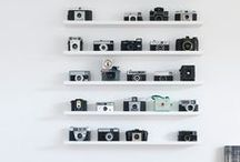 Collecting / Hobbies are important. Take a visual vacation through some of Martha Stewart's favorite collectors and their collections.